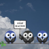 Owls holding racism sign