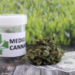 Medical marijuana buds with dollar bills